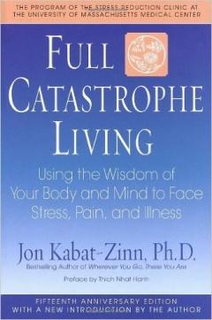 Jon Kabat-Zinn  (Author), Thich Nhat Hanh